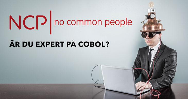 Är du expert på COBOL? - Konsulter och mentorer sökes